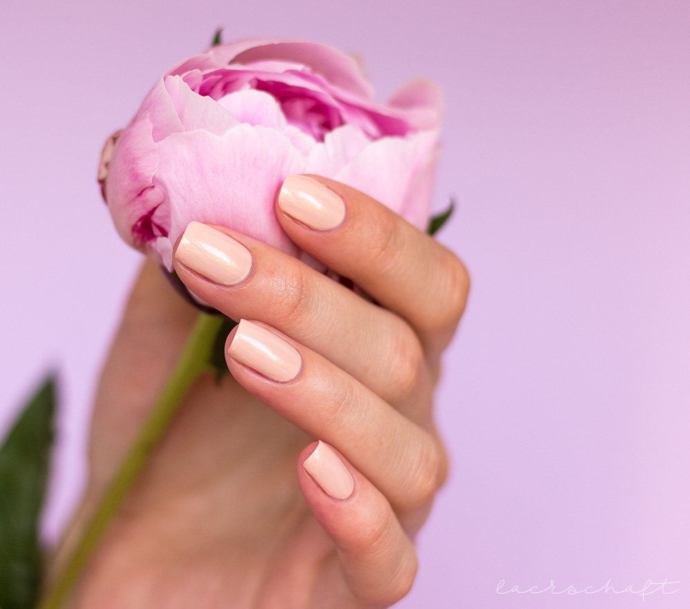 LOV-Cosmetics-Spring-Make-up-Collection-2017-Nagellack-Nailpolish-graceful-beige-amazing-rose-seductive-pink-forever-berry-swatch-review-2
