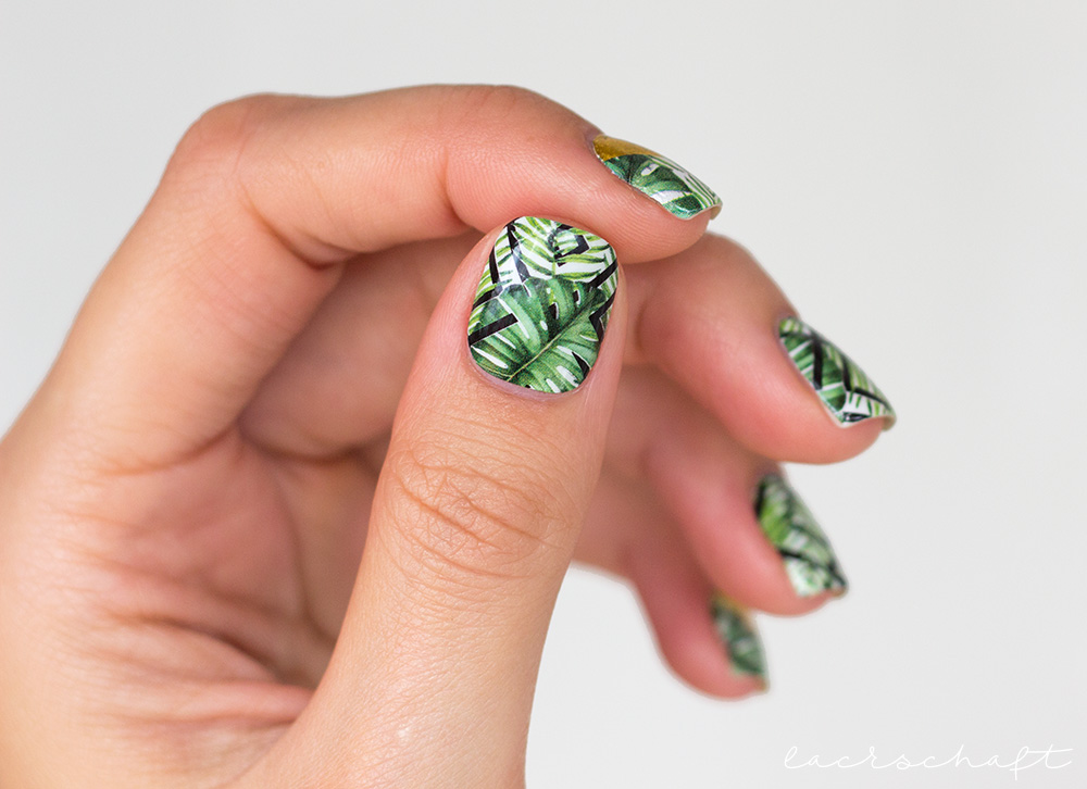 stickergigant-dschungelgold-nagelsticker-nailwraps-monstera-1