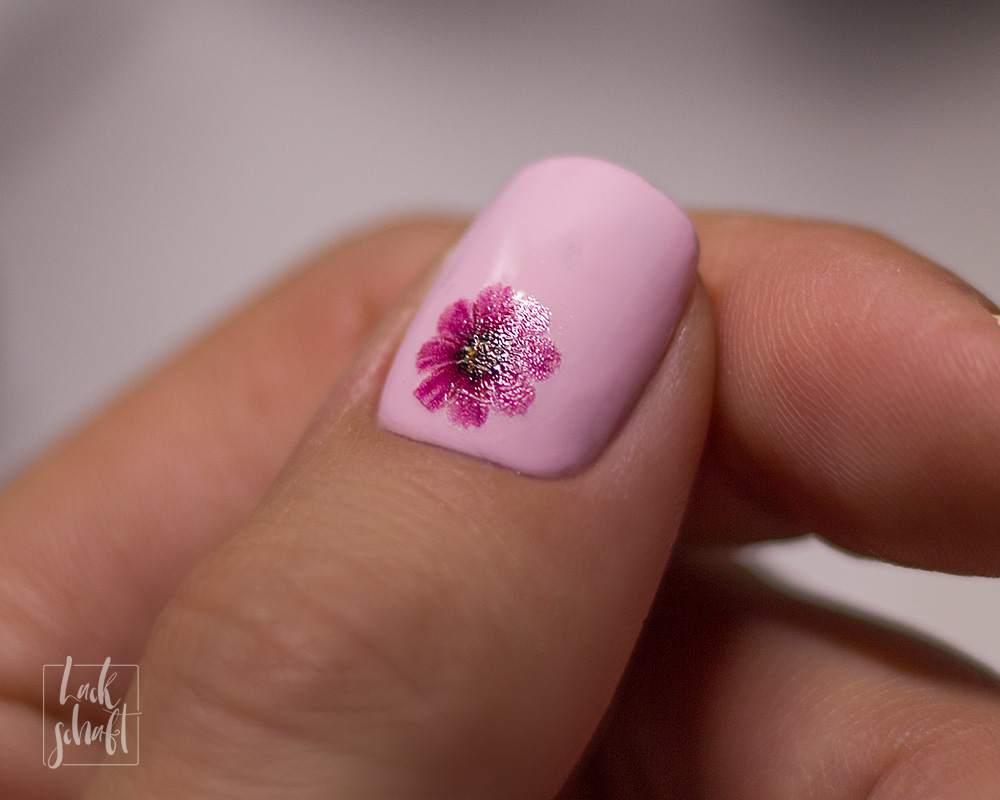 Odine-Nails-Waterdecals-Cosmic-Doodle-Pressed-Flowers-Gouache-Therapy-2